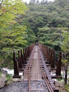 旅 in 鹿児島(屋久島編) No.3